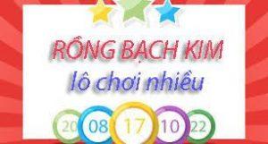 rong-bach-kim
